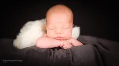 <h5>Babyfotografie</h5>